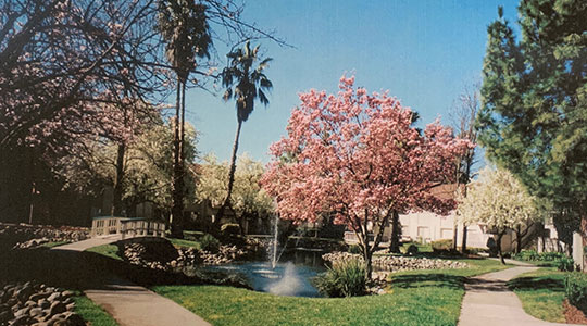 """The Lakes at Fair Oaks, Currently Known as """"Park Place Fair Oaks"""" (Realized)"""